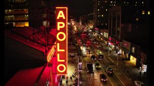 The Apollo Doc